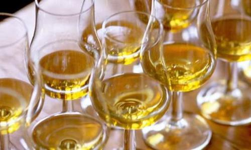 Scotch-whisky-primer-for-beginners-845x321